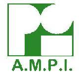 AMPI LOGO (2)