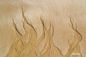 Natural Sand Background