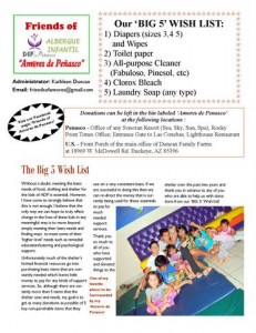 Friends of Amores newsletter Page 2